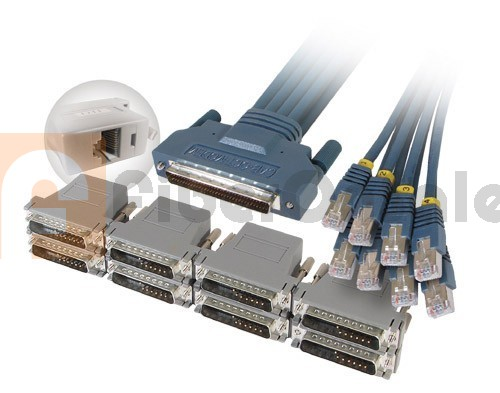 Cisco CAB-OCTAL-9DTE CAB-OCTAL-ASYNC Cable and 8 RJ45 to DB9 Female Adapters