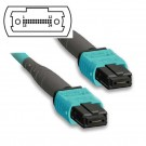 24 Fibers 10G OM4 12 Strands MTP/MPO Trunk Cable 3.0mm LSZH/Riser