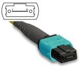 12 Fibers Single-Mode 12 Strands MTP/MPO Trunk Cable 3.0mm LSZH/Riser